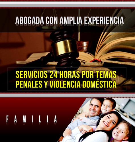 abogada con amplia experiencia, familia, penal, desalojos