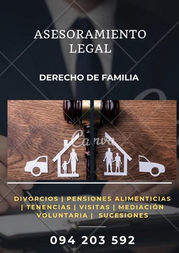 abogados, derecho de familia, penal, laboral, otras materias