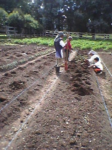 abono orgánico para cultivos y jardines
