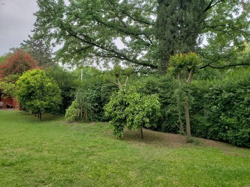 acacias blancas excelente quinta 1200m de lote