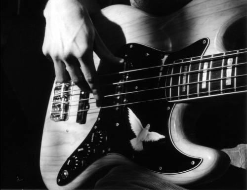 academia musical guitarra, piano, canto, violín, batería y +