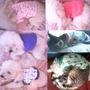 Franelas Para Su Mascota, Perros, Gatos, Diferentes Tallas.