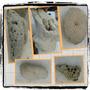 Rocas Decorativas Para Peces Ciclidos, Acuarios, Cuevas