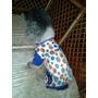 Pijamas Para Perritos Al Mayor Talla S Y M Fabricantes