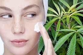 aceite cannabis cbd topico piel suave,flexible y sana 100%