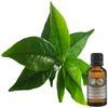 aceite de árbol de te 500 ml