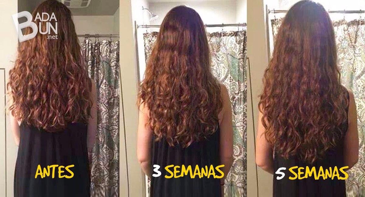 Como usar el aceite del romero a los cabellos
