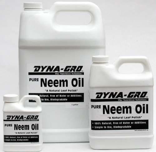 aceite de neem - (100ml)