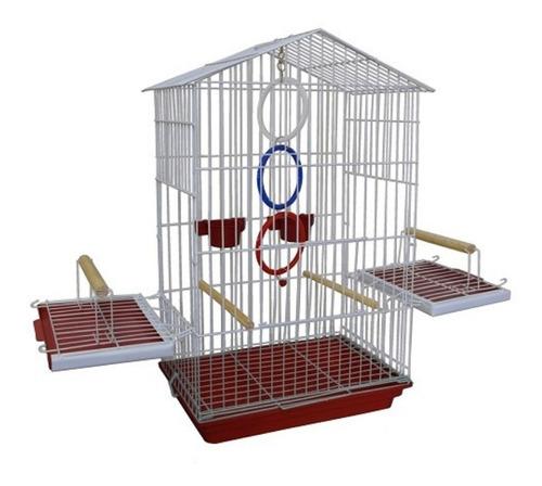acessórios para aves mansas jandaia periquito da caatinga