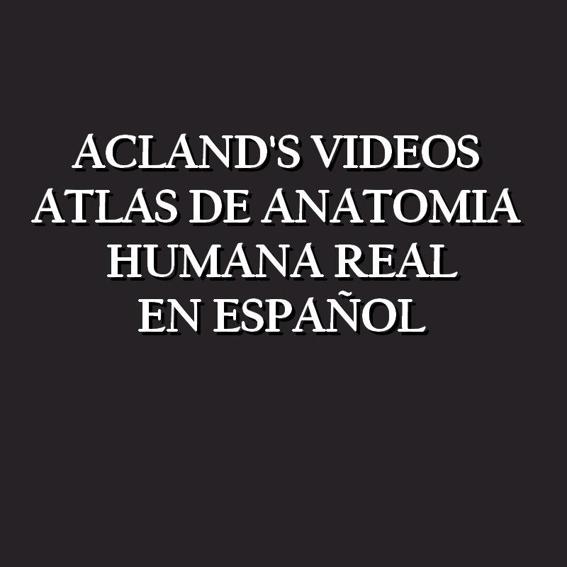Acland Vídeo Atlas De Anatomía Humana Real En Español Online - Bs ...