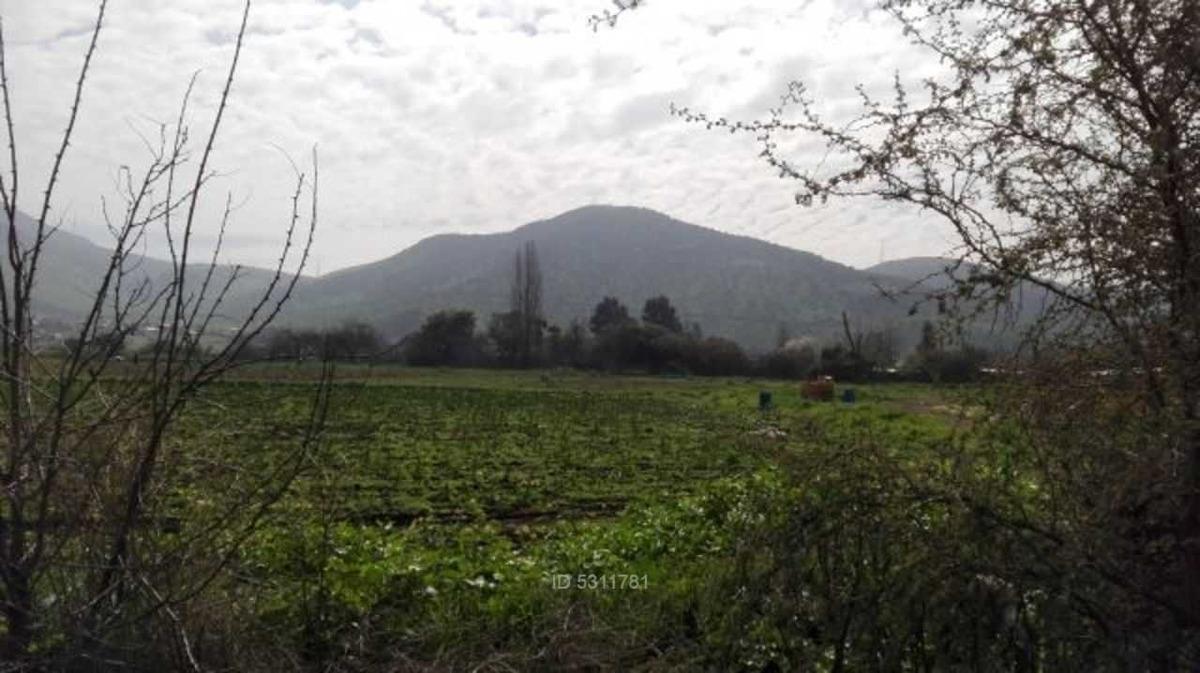 aconcagua / colina