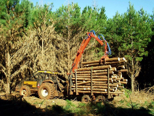acoplados forestales para madera 10 y 12 tn