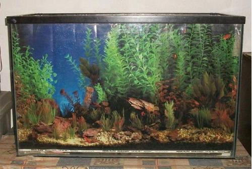 acuario 200 litros sin accesorios
