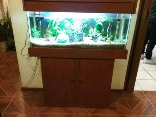 acuario con mueble 100 litros