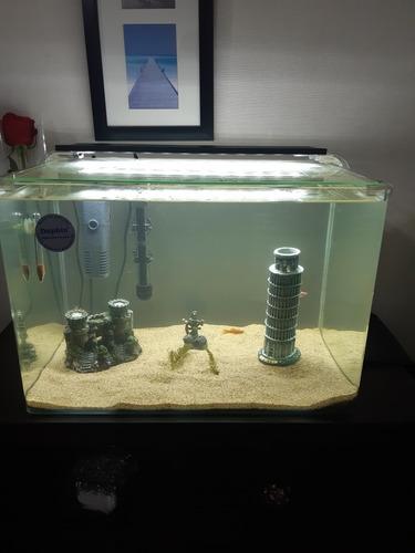 acuario marca dolphin 50 litros con todos sus enplementos.