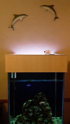 acuario mueble para cubo de 40 a estrenar!