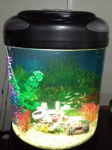 acuario o pecera resun mini moon 450 envio gratis