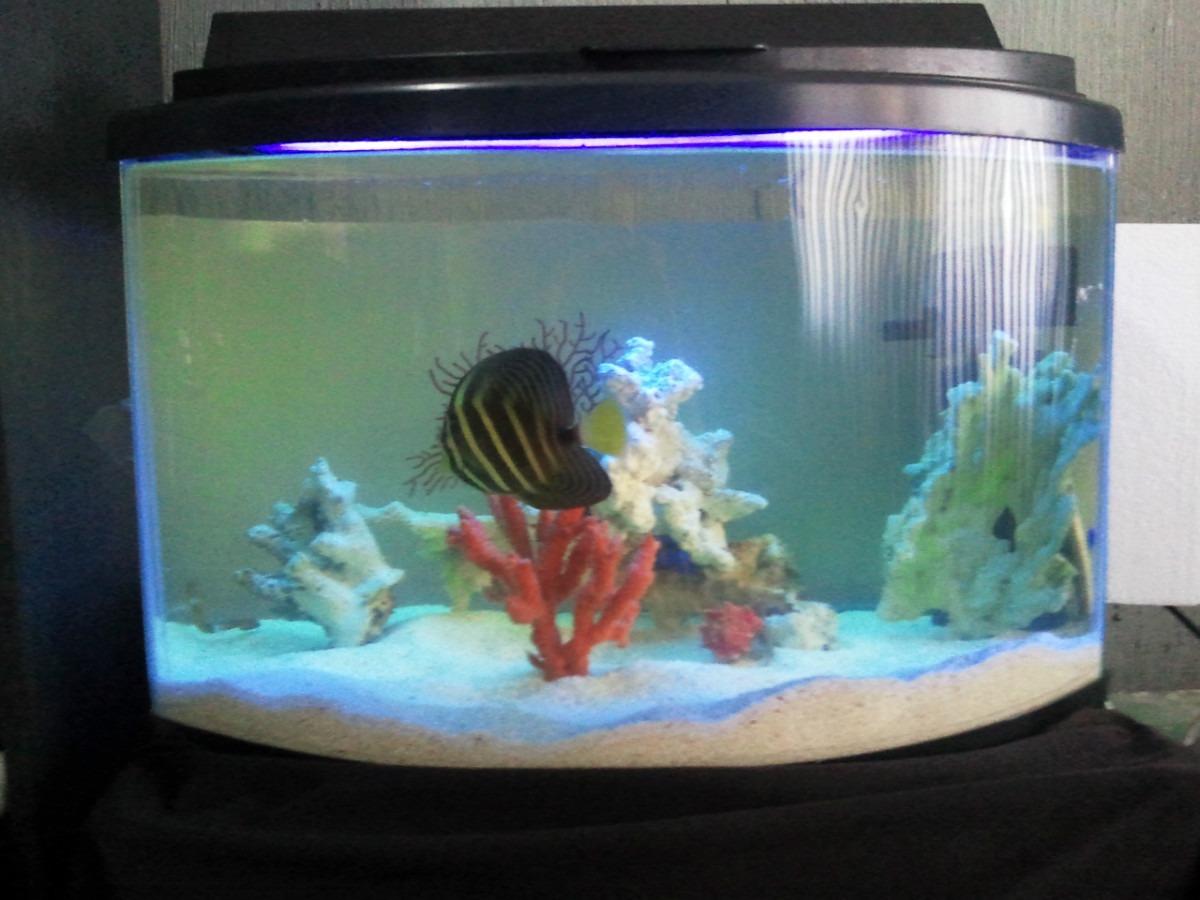 Acuario peces marinos pecera panoramica marina paquete para 2 en mercado libre - Pecera de pared ...