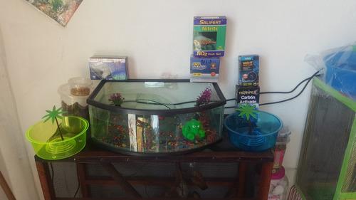 acuario y tienda de mascotas