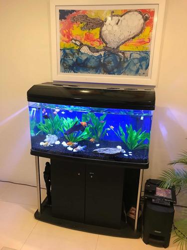 acuarios envidiables easyocean