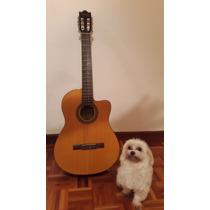 Guitarra Electro Clasica Marca Ibanez