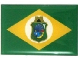 adesivo bandeira ceará resinado universal