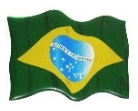 adesivo bandeira do brasil resinada trêmula universal