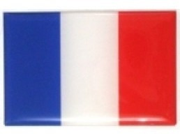 adesivo bandeira frança resinado universal