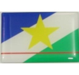 adesivo bandeira roraima resinado universal