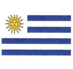 adesivo bandeira uruguai resinada