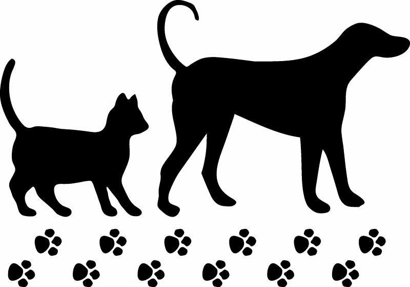 Adesivo Porta De Banheiro ~ Adesivo De Parede Decorativo Cachorro E Gato Com Patinhas R$ 27,99 em Mercado Livre