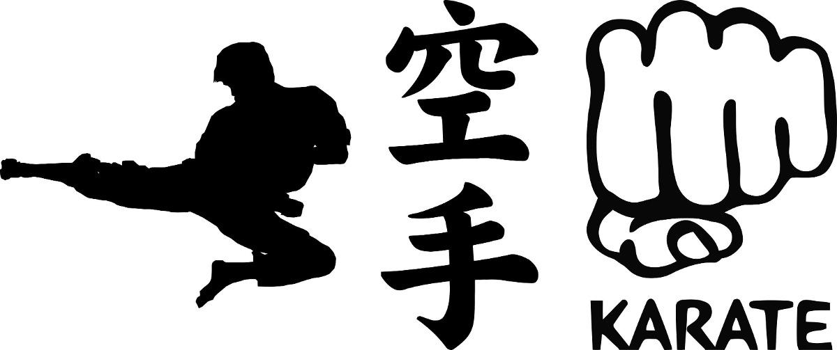As artes marciais e seus princípios morais na formação de crianças em idade escolar 10