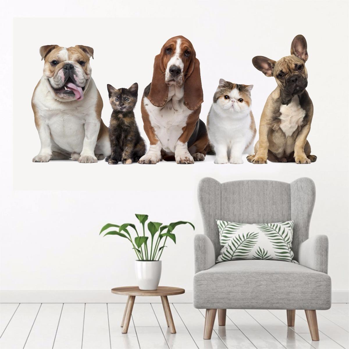 7fa17f339 Adesivo Parede Pet Shop Animal Cachorro Gato Banho Tosa 2 - R$ 54,90 em  Mercado Livre