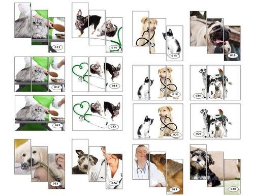 adesivo poster cachorro petshop veterinaria groomer