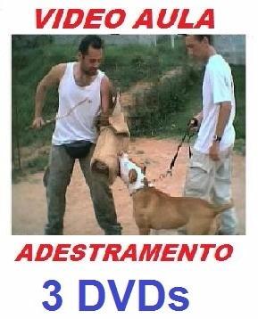 adestramento de cães em 3 dvds para todos os cachorro xsw