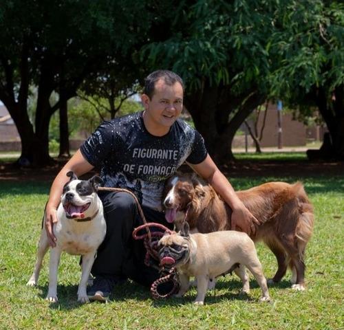 adestramento para cães ,somente em campo grande ms.