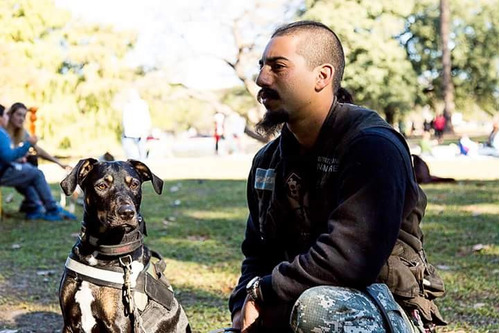 adiestrador canino profesional zona oeste