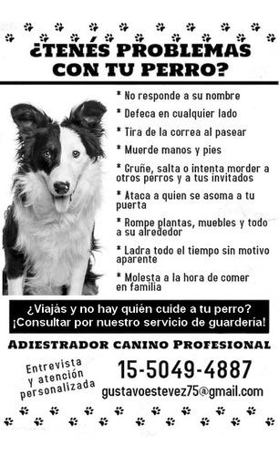 **adiestramiento canino a domicilio ** guarderia canina**.
