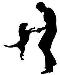 adiestramiento canino a domicilio o pensión campestre nuevo