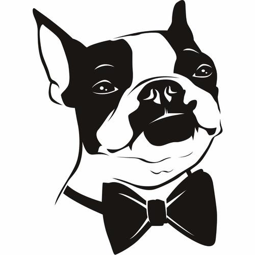 adiestramiento canino educando en familia zona n y cap fed