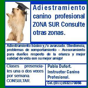 adiestramiento canino profesional-¡¡ lea atentamente!!