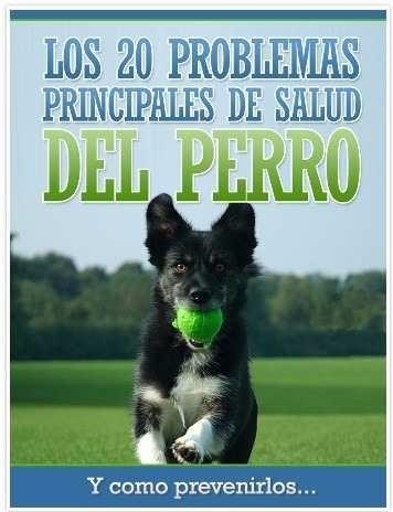 adiestramiento canino, tener el control total del perro+bono