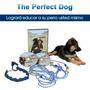 The Perfect Dog Sistema Entrenamiento Para Perros