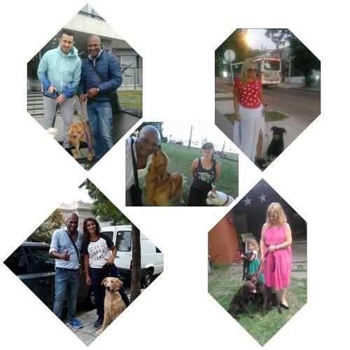 adiestramiento yrehabilitaciones caninas/ ruben silva videla