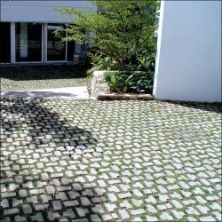 Adoquines Ecologicos Prefabricados De Concreto Con Grama