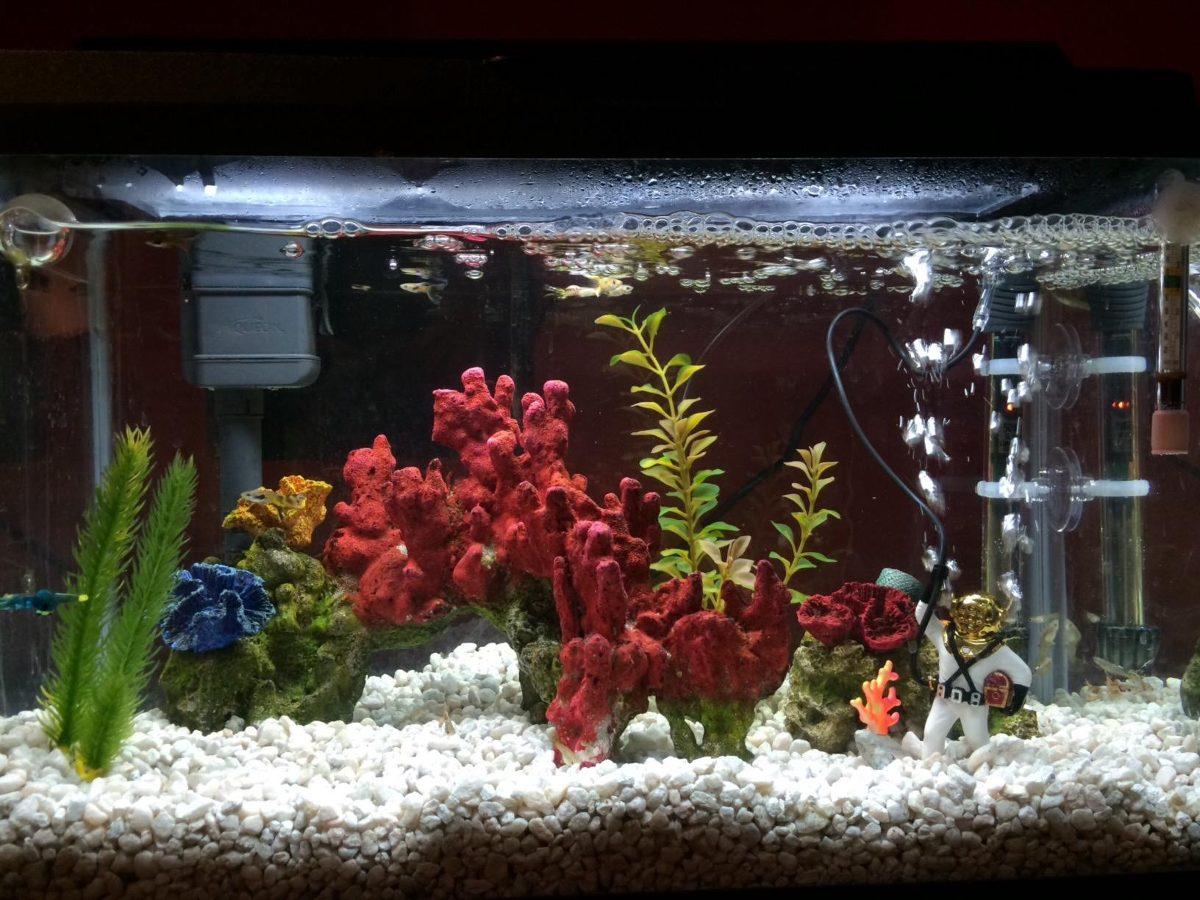 adorno acuario buzo antiguo dulce marino seguro decoracin