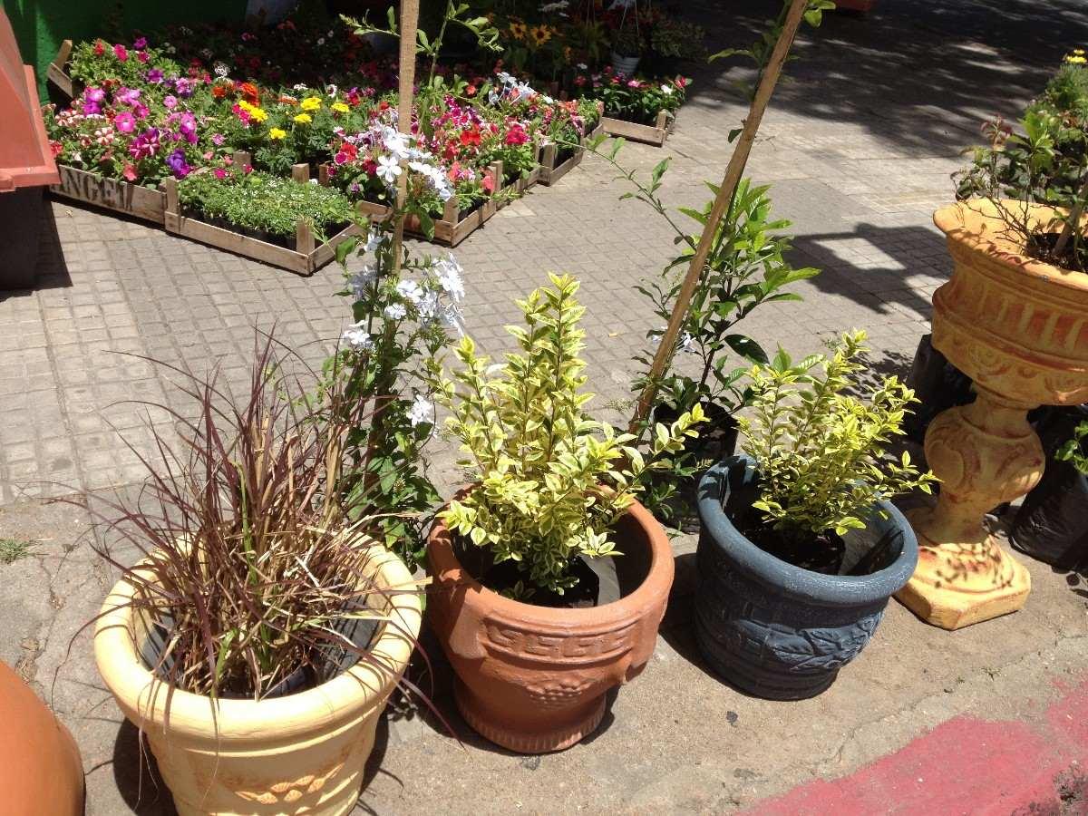 Adornos y macetas para jardin tierra fertilizantes 250 for Macetas para jardin