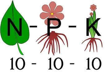 Resultado de imagem para NPK
