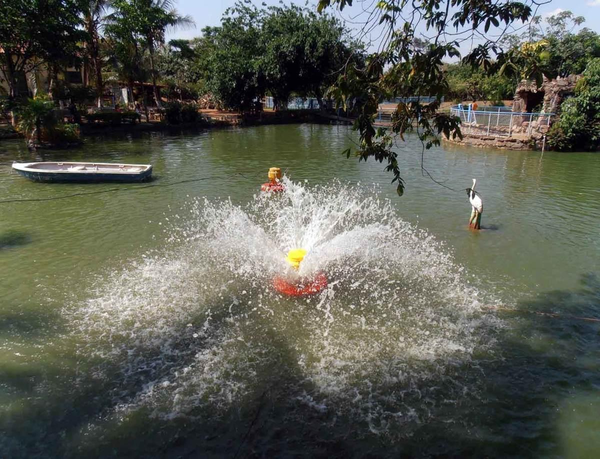 aerador chafariz para piscicultura 1 5 cv