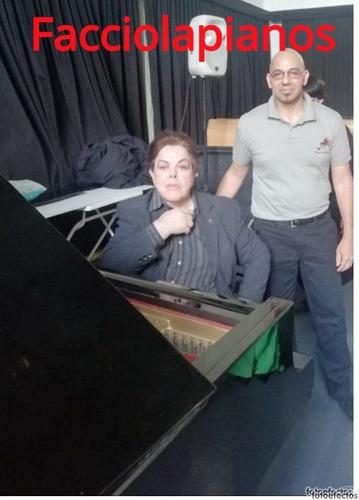 afinador  de pianos /bs as  y caba